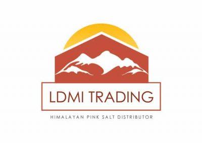 ldmi trading logo